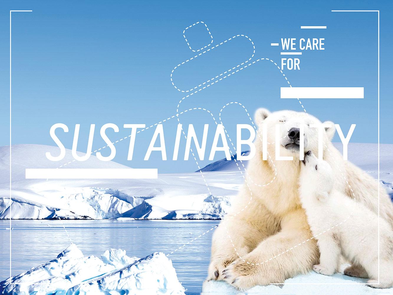 sutainability mother bear cud polar water ice